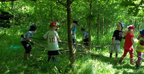 Holmsdale Manor Nursery Ibstock forest school cooperation